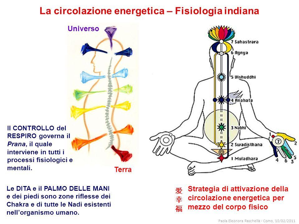 La circolazione energetica – Fisiologia indiana