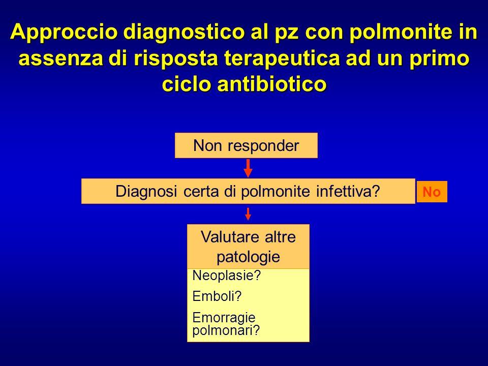 Approccio diagnostico al pz con polmonite in assenza di risposta terapeutica ad un primo ciclo antibiotico