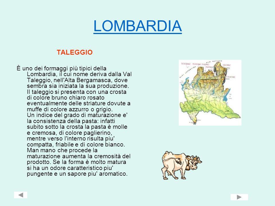 LOMBARDIA TALEGGIO.