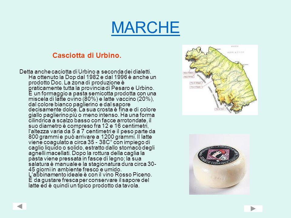 MARCHE Casciotta di Urbino.
