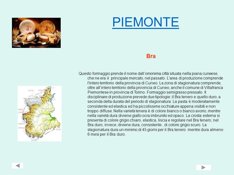 PIEMONTE Bra.