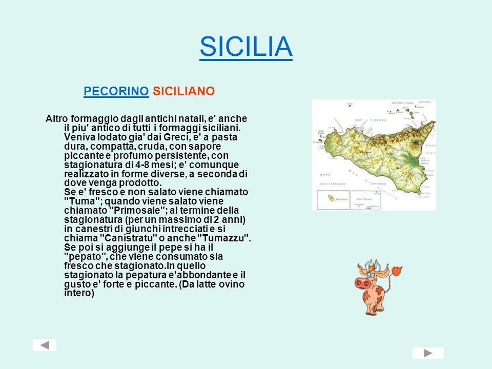 SICILIA PECORINO SICILIANO