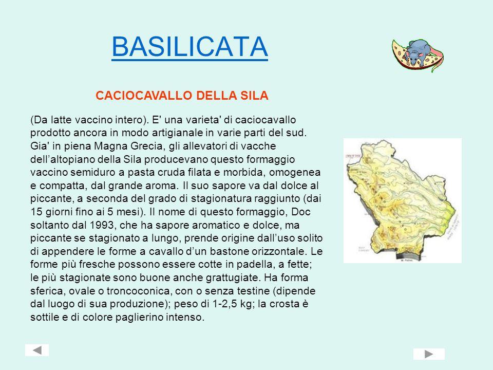 BASILICATA CACIOCAVALLO DELLA SILA