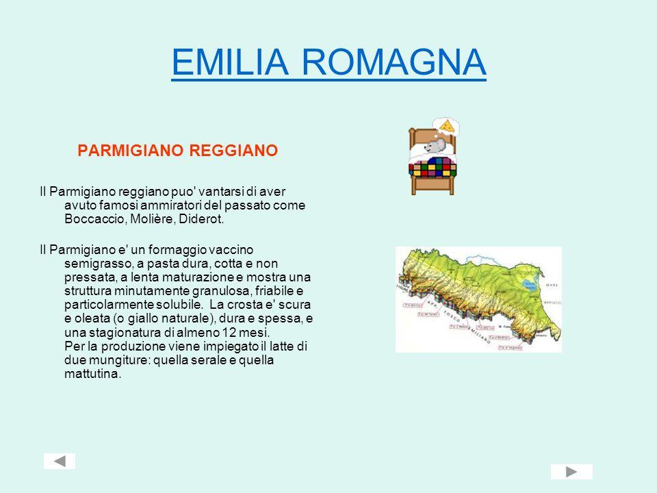 EMILIA ROMAGNA PARMIGIANO REGGIANO