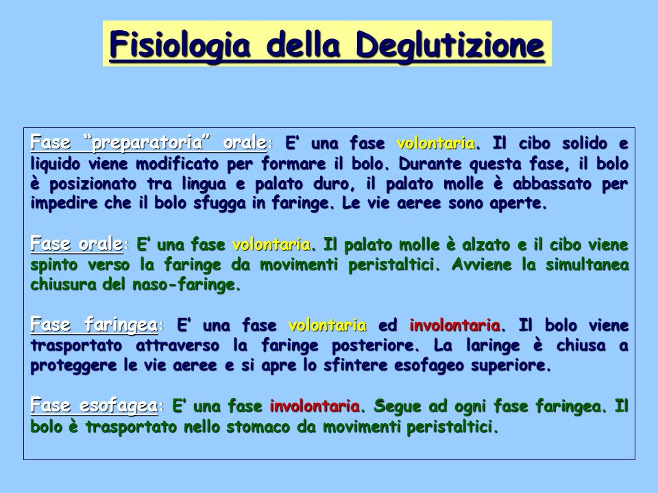 Fisiologia della Deglutizione