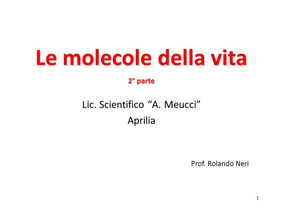 Lic. Scientifico A. Meucci