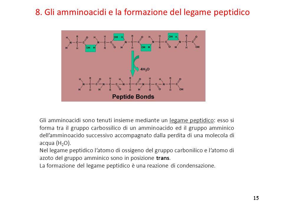 8. Gli amminoacidi e la formazione del legame peptidico