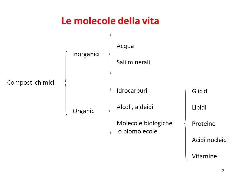 Le molecole della vita Inorganici Acqua Sali minerali Composti chimici