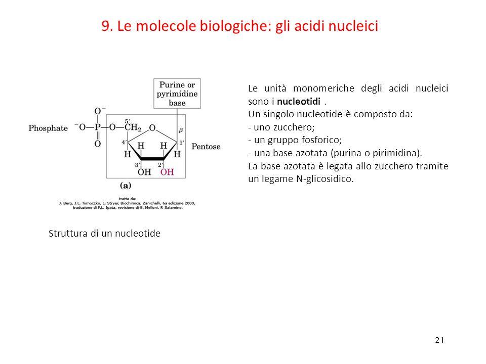 9. Le molecole biologiche: gli acidi nucleici