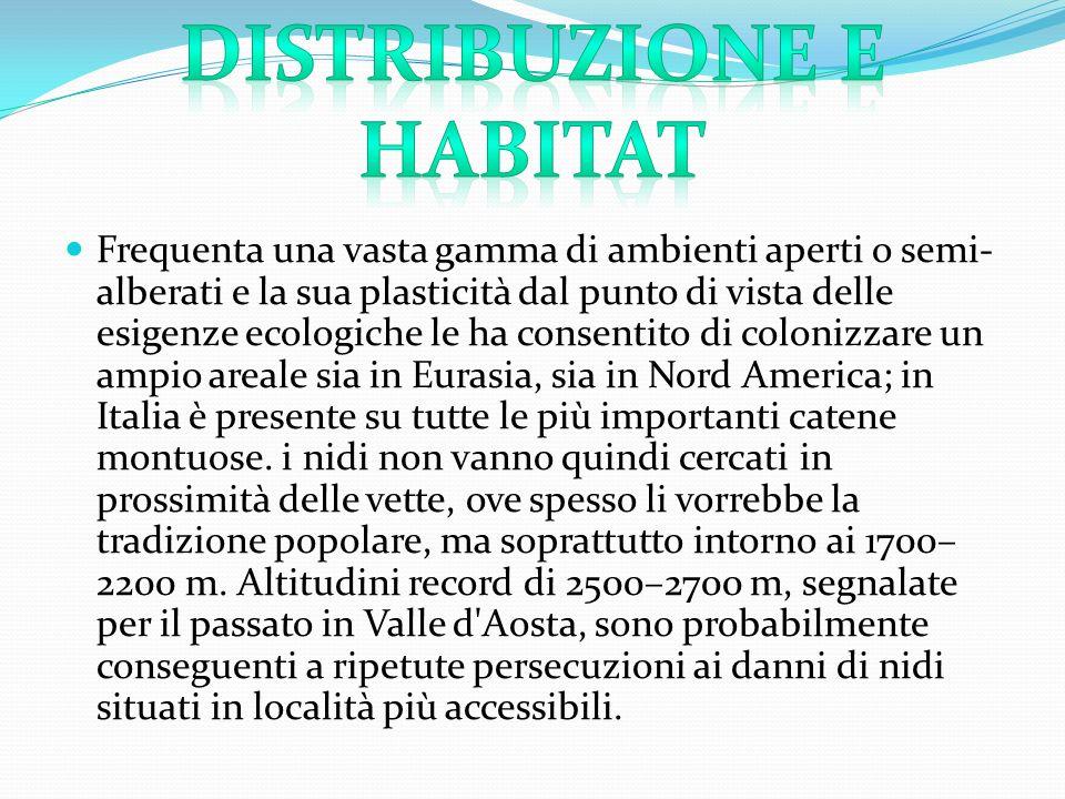 Distribuzione e habitat