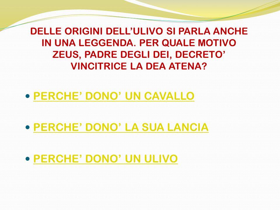 PERCHE' DONO' UN CAVALLO PERCHE' DONO' LA SUA LANCIA