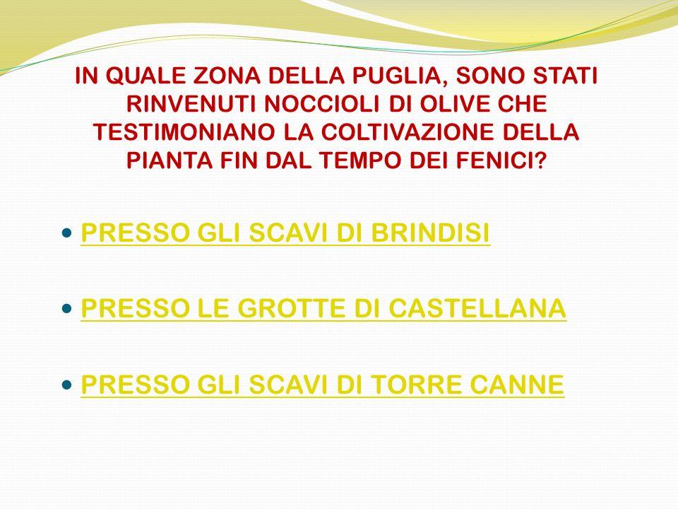 PRESSO GLI SCAVI DI BRINDISI PRESSO LE GROTTE DI CASTELLANA