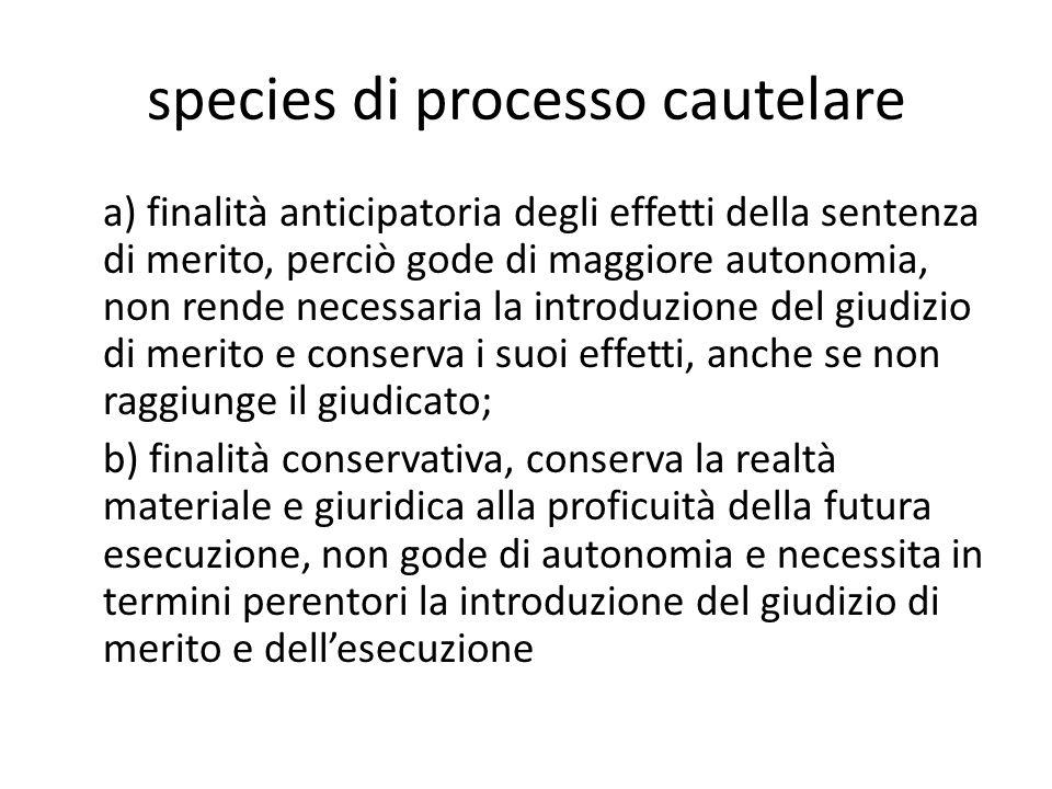 species di processo cautelare