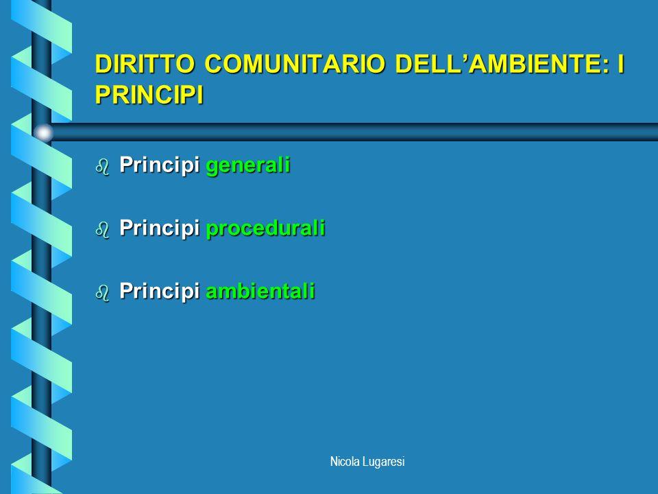 DIRITTO COMUNITARIO DELL'AMBIENTE: I PRINCIPI