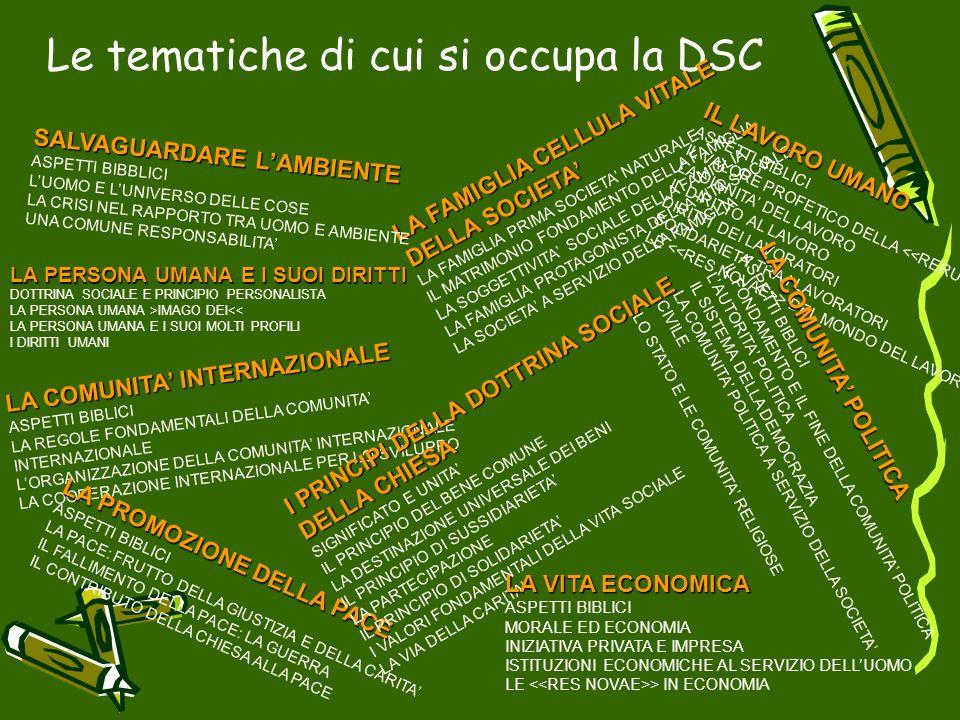 Le tematiche di cui si occupa la DSC