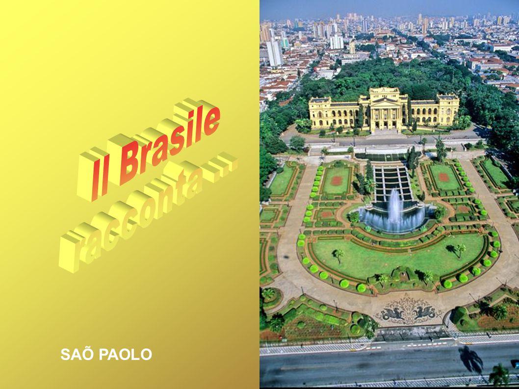 Il Brasile racconta ... SAÕ PAOLO