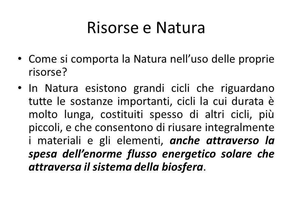 Risorse e Natura Come si comporta la Natura nell'uso delle proprie risorse