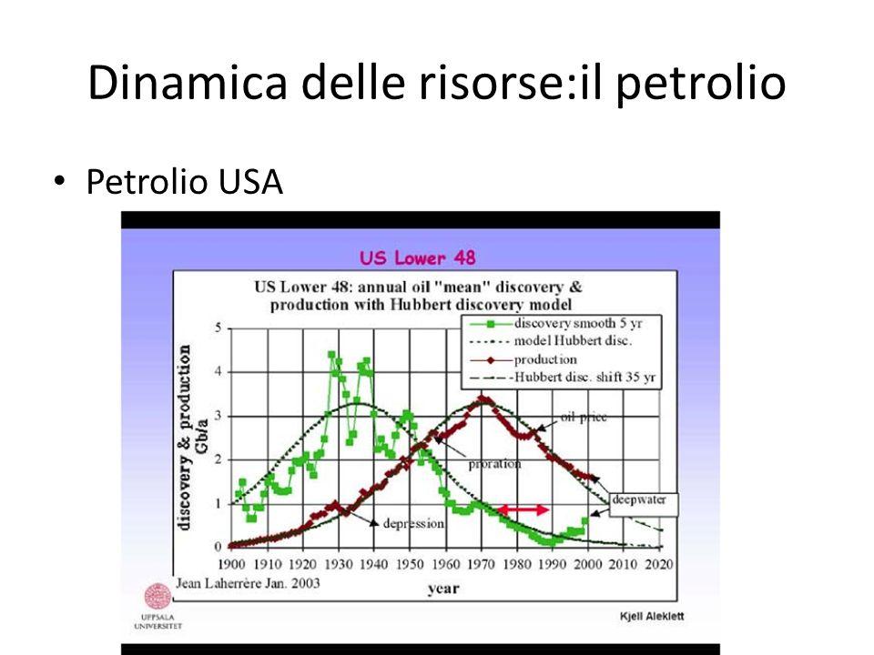 Dinamica delle risorse:il petrolio
