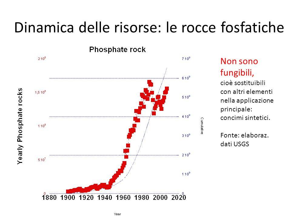Dinamica delle risorse: le rocce fosfatiche