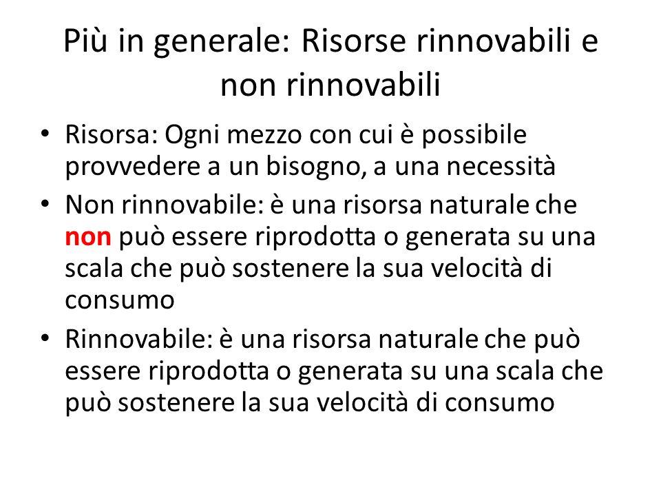 Più in generale: Risorse rinnovabili e non rinnovabili