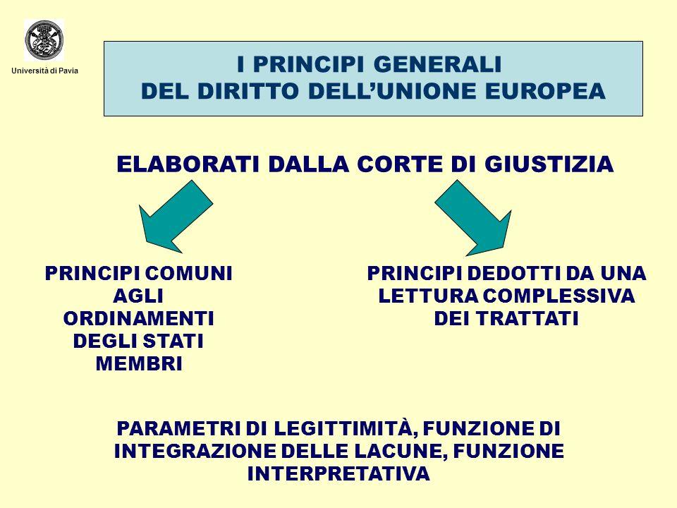 DEL DIRITTO DELL'UNIONE EUROPEA