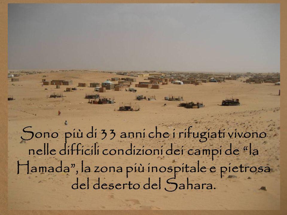 Sono più di 33 anni che i rifugiati vivono nelle difficili condizioni dei campi de la Hamada , la zona più inospitale e pietrosa del deserto del Sahara.