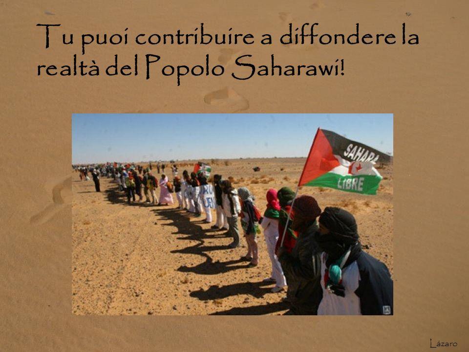 Tu puoi contribuire a diffondere la realtà del Popolo Saharawi!