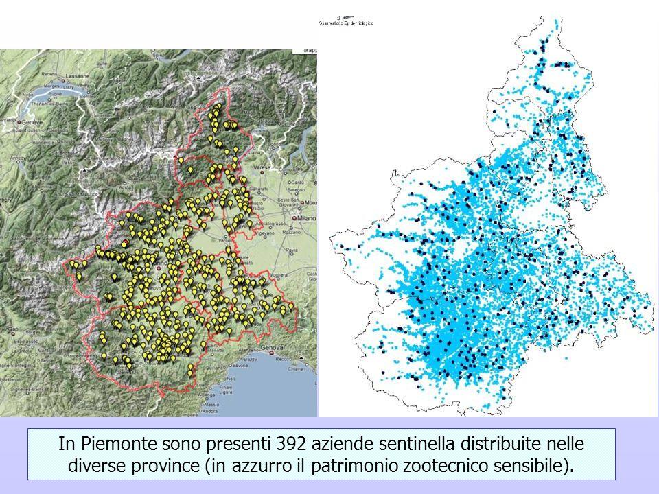 In Piemonte sono presenti 392 aziende sentinella distribuite nelle diverse province (in azzurro il patrimonio zootecnico sensibile).