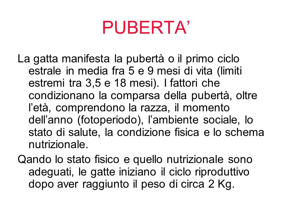 PUBERTA'