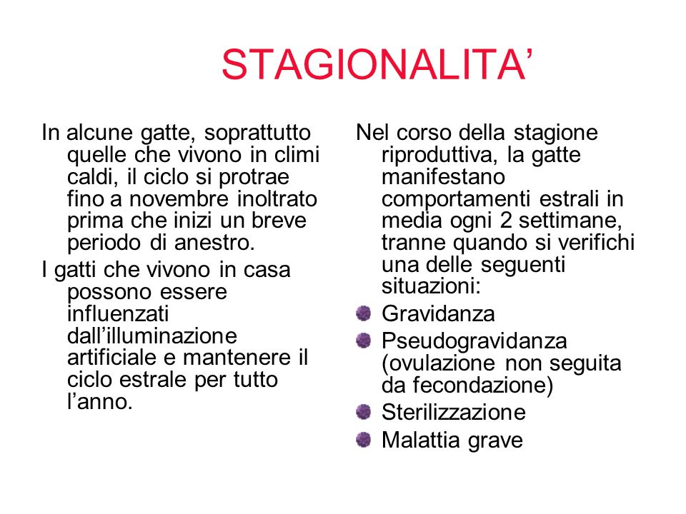 STAGIONALITA'