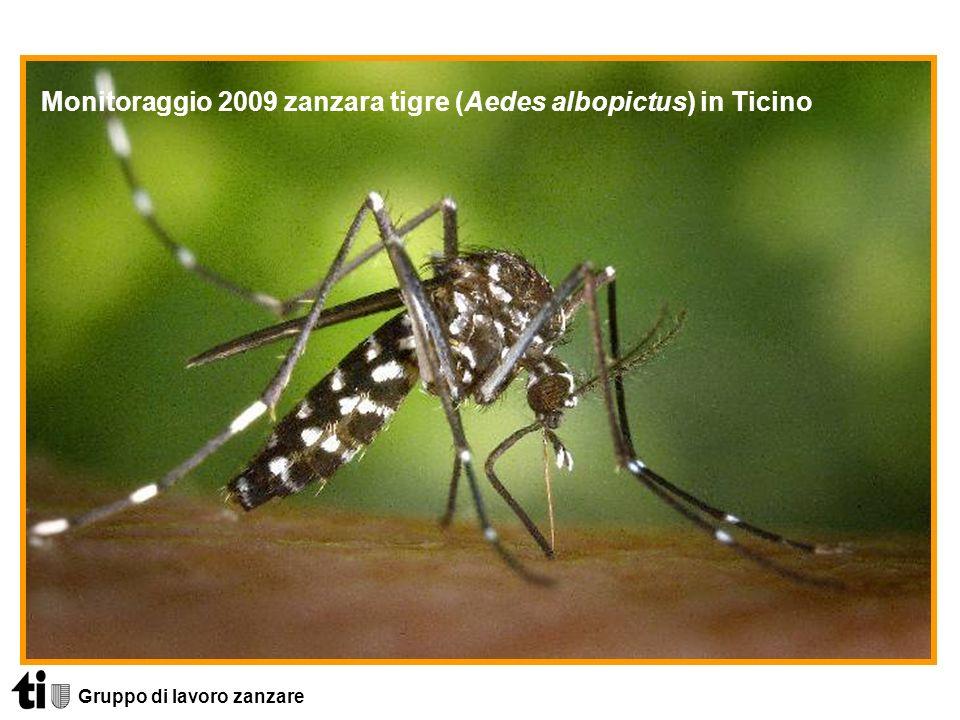 Monitoraggio 2009 zanzara tigre (Aedes albopictus) in Ticino