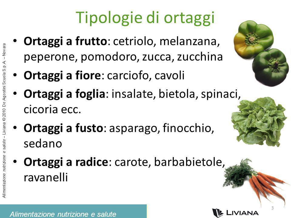 Tipologie di ortaggi Ortaggi a frutto: cetriolo, melanzana, peperone, pomodoro, zucca, zucchina. Ortaggi a fiore: carciofo, cavoli.