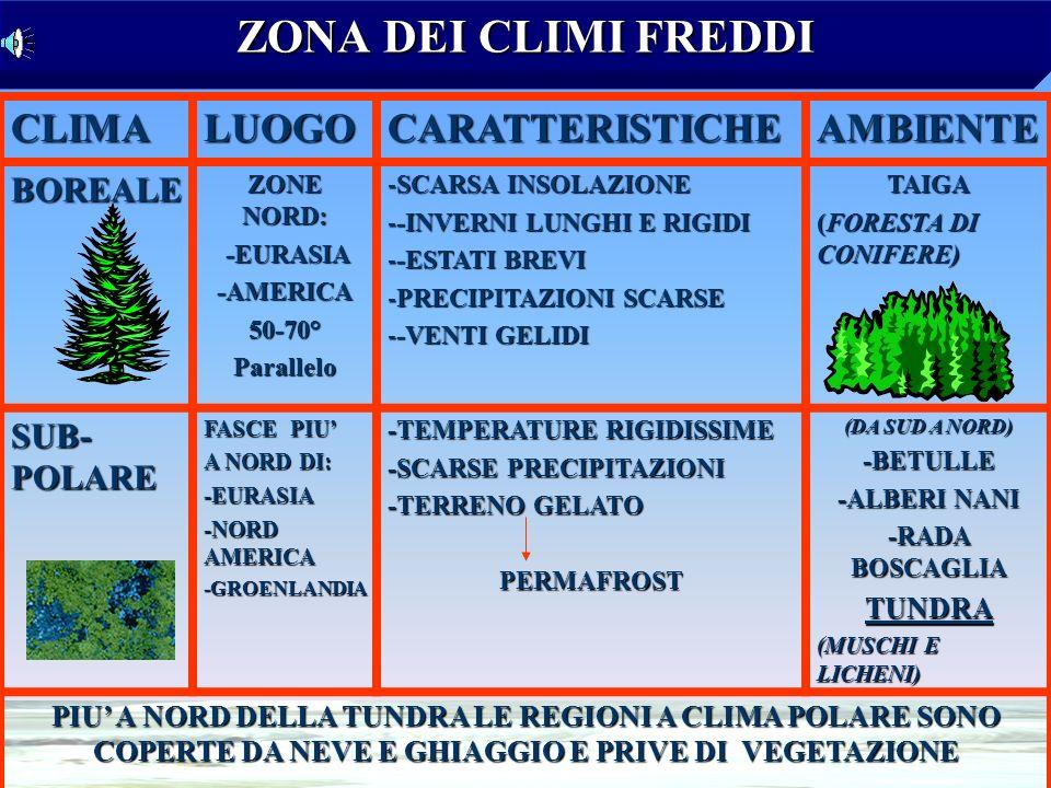 ZONA DEI CLIMI FREDDI CLIMA LUOGO CARATTERISTICHE AMBIENTE BOREALE