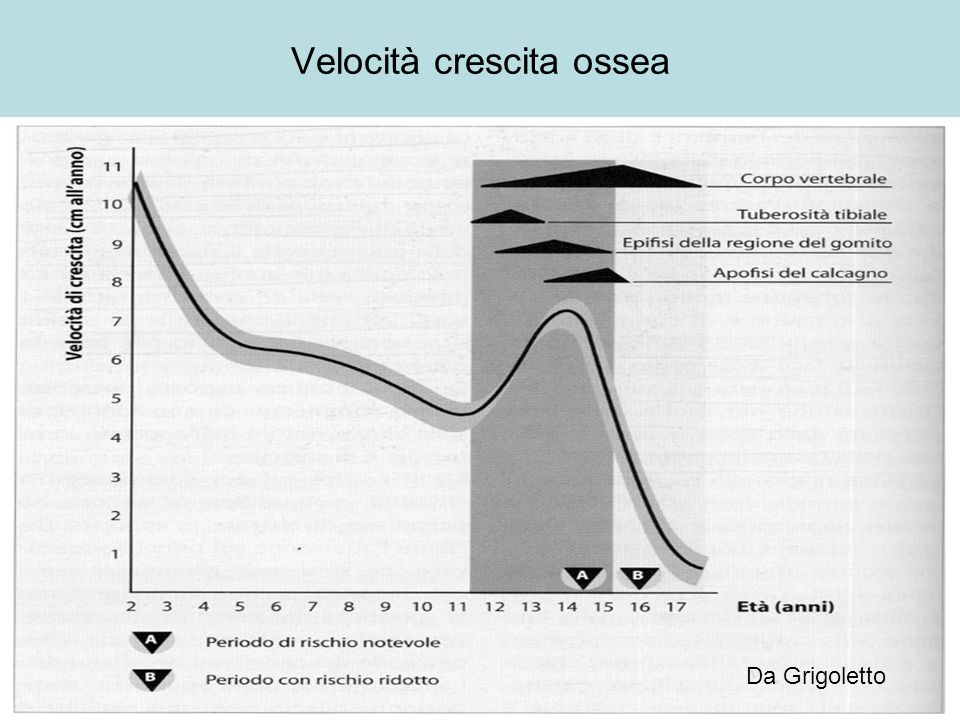 Velocità crescita ossea