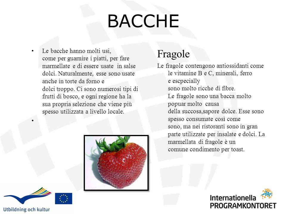 BACCHE