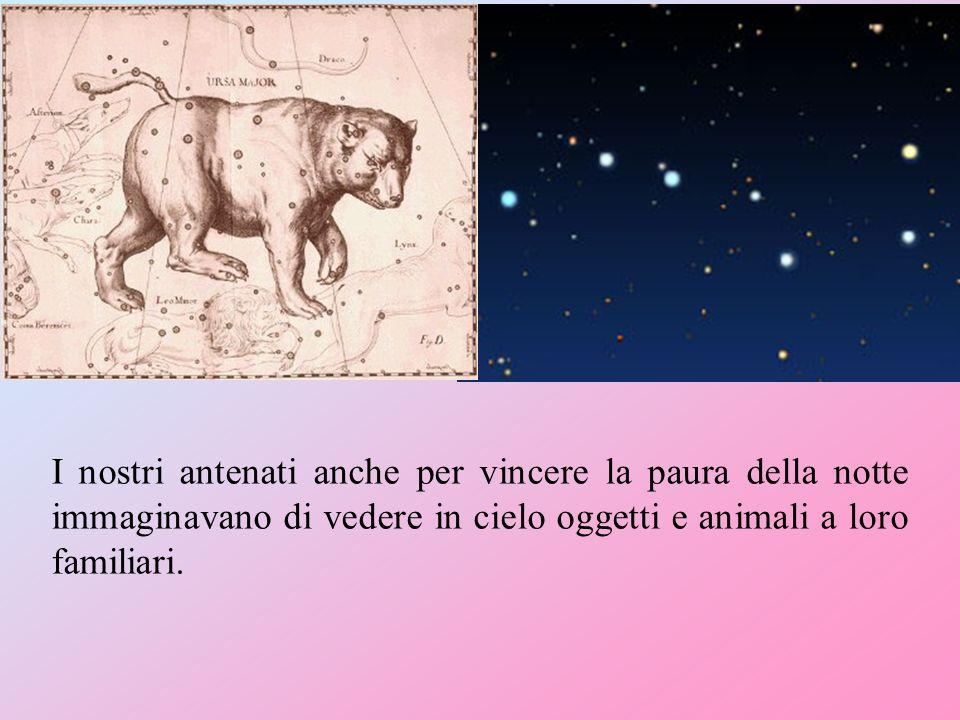 I nostri antenati anche per vincere la paura della notte immaginavano di vedere in cielo oggetti e animali a loro familiari.