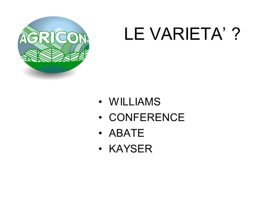 LE VARIETA' WILLIAMS CONFERENCE ABATE KAYSER