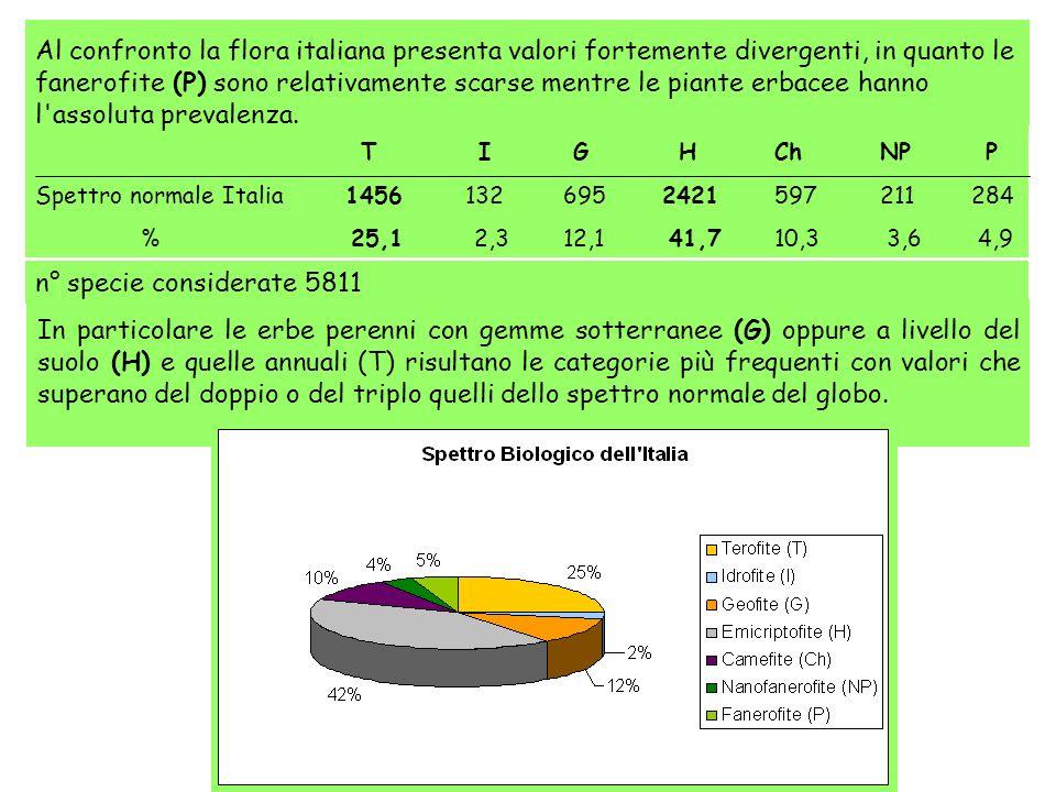 Al confronto la flora italiana presenta valori fortemente divergenti, in quanto le fanerofite (P) sono relativamente scarse mentre le piante erbacee hanno l assoluta prevalenza.