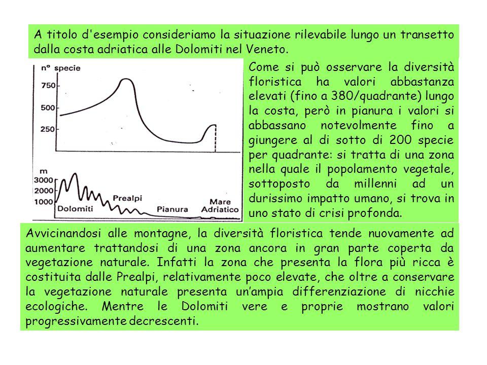 A titolo d esempio consideriamo la situazione rilevabile lungo un transetto dalla costa adriatica alle Dolomiti nel Veneto.