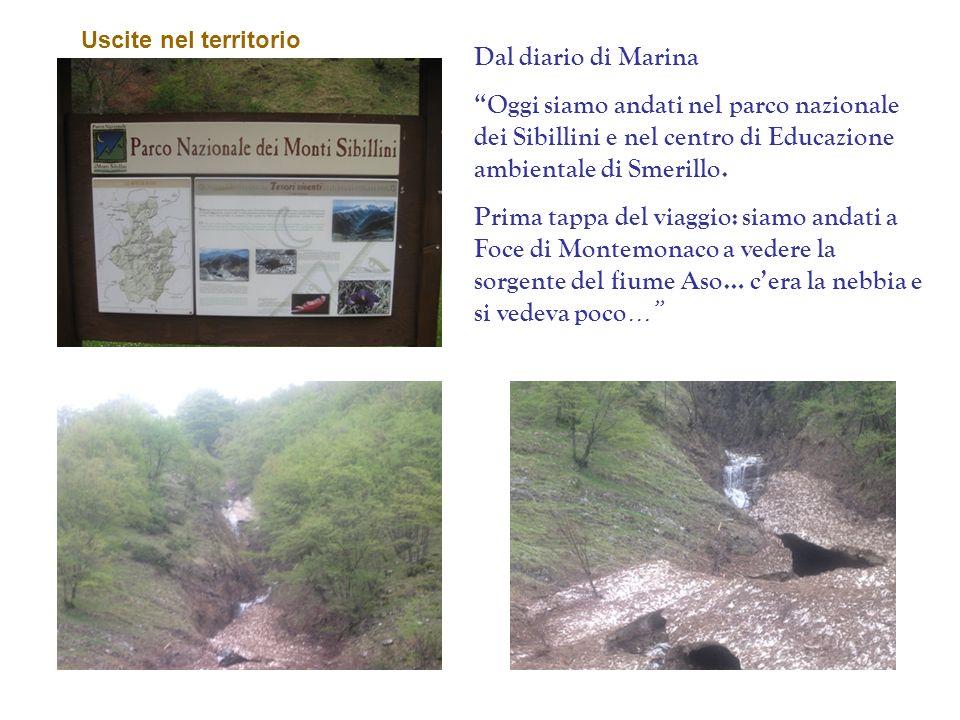 Uscite nel territorio Dal diario di Marina. Oggi siamo andati nel parco nazionale dei Sibillini e nel centro di Educazione ambientale di Smerillo.