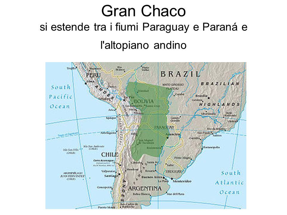 Gran Chaco si estende tra i fiumi Paraguay e Paraná e l altopiano andino