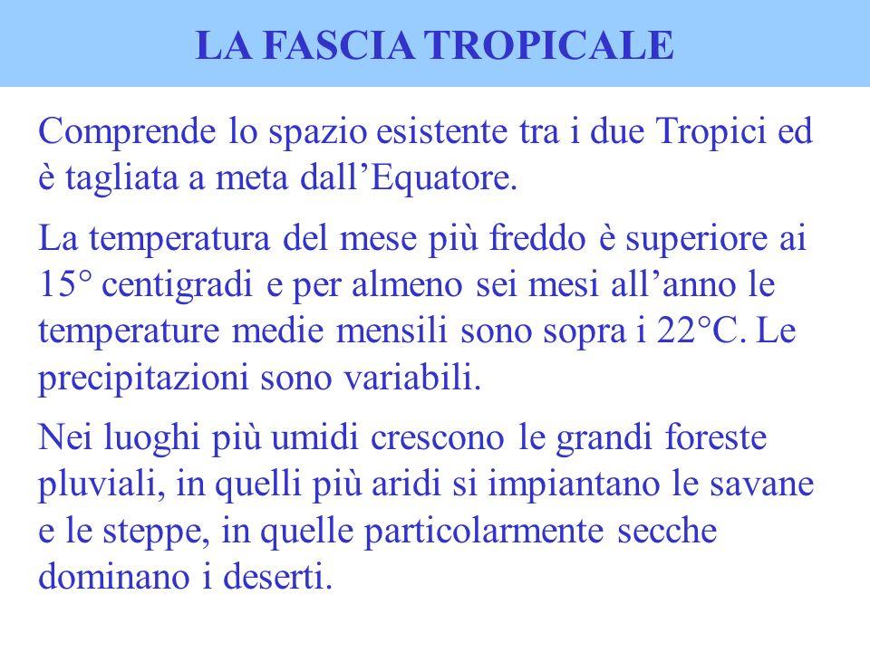 LA FASCIA TROPICALE Comprende lo spazio esistente tra i due Tropici ed è tagliata a meta dall'Equatore.