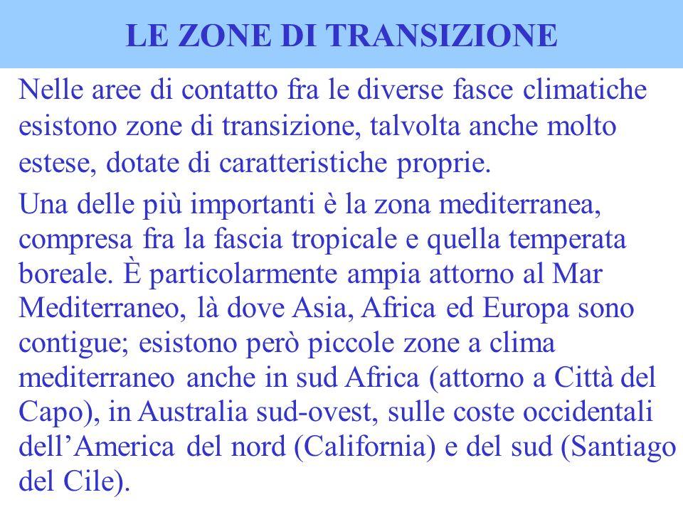LE ZONE DI TRANSIZIONE