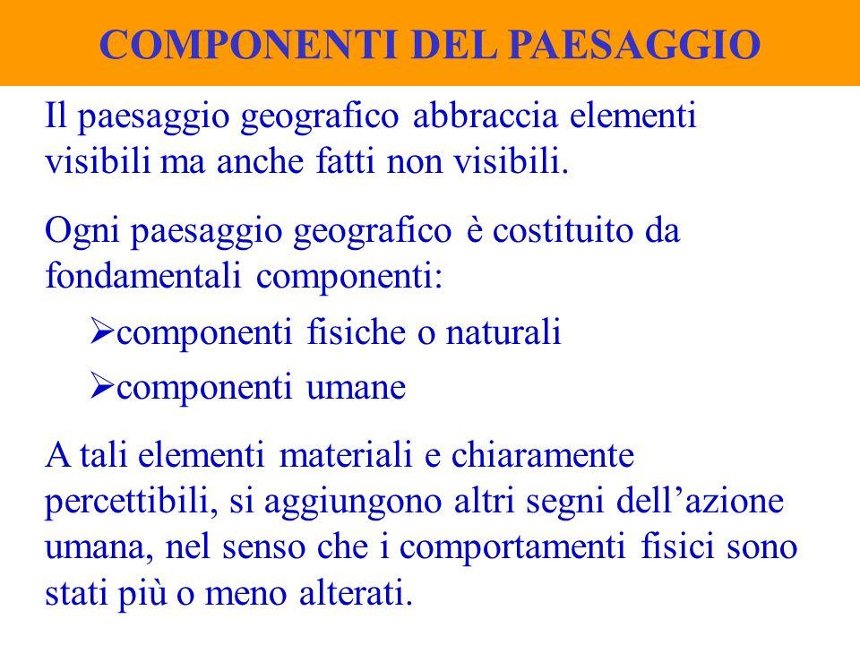 COMPONENTI DEL PAESAGGIO