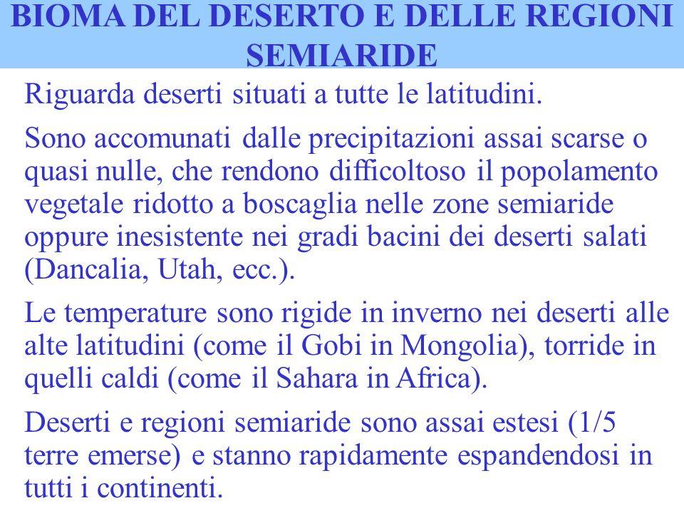 BIOMA DEL DESERTO E DELLE REGIONI SEMIARIDE