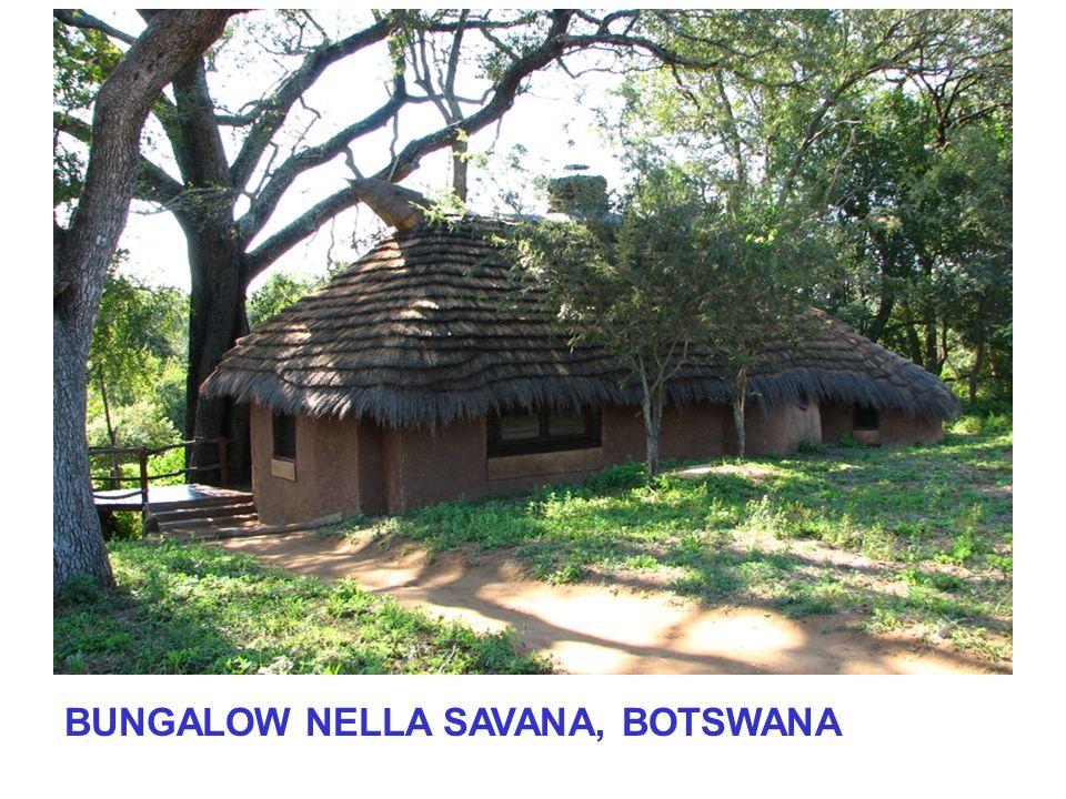 BUNGALOW NELLA SAVANA, BOTSWANA