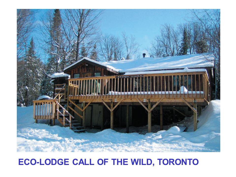 ECO-LODGE CALL OF THE WILD, TORONTO