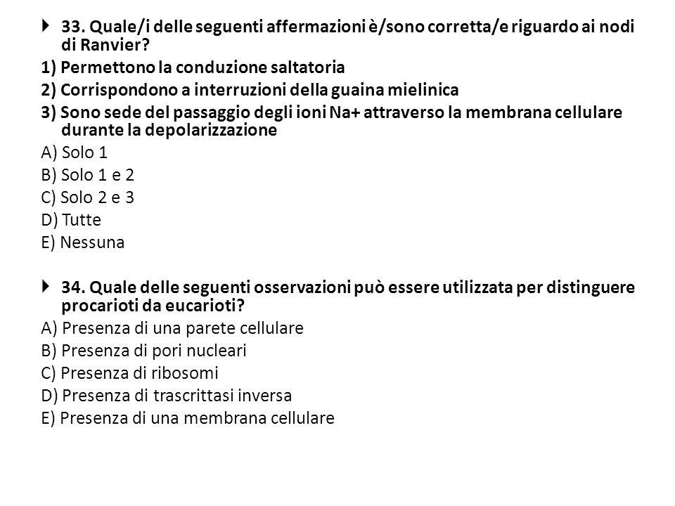 33. Quale/i delle seguenti affermazioni è/sono corretta/e riguardo ai nodi di Ranvier