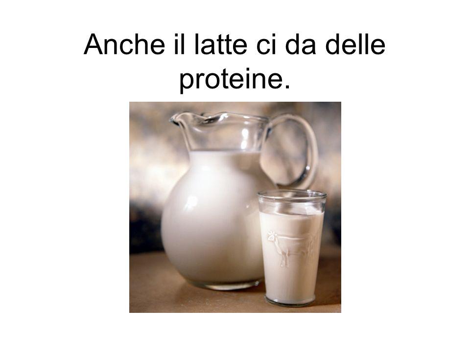 Anche il latte ci da delle proteine.