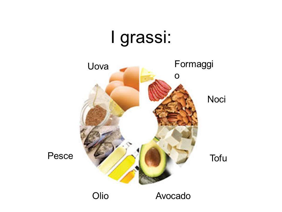 I grassi: Formaggio Uova Noci Pesce Tofu Olio Avocado